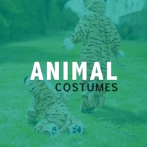 Role Play - Animals