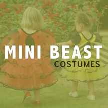 Role Play - Mini Beasts